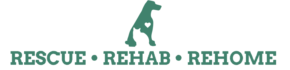 cat dog logo